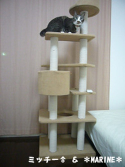 Tower2_3